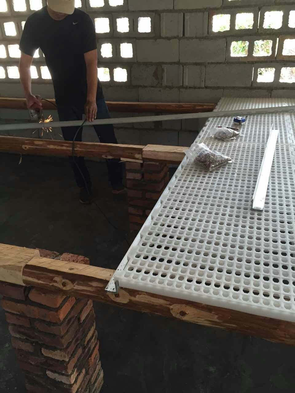 plastic slatted floor for poultry broiler layer duck goose